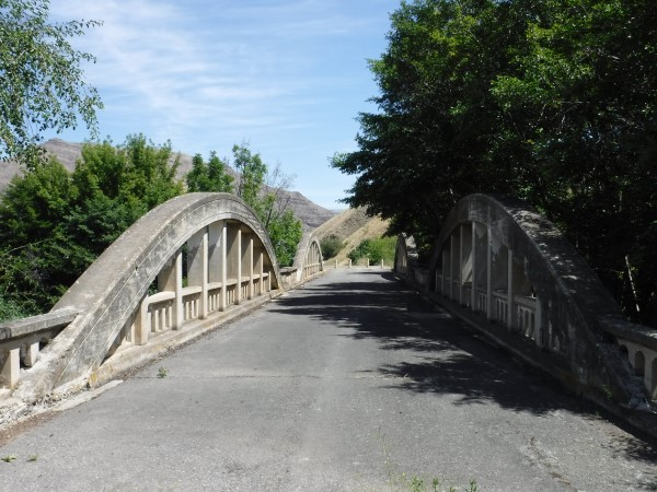 Reverse arch concrete bridge