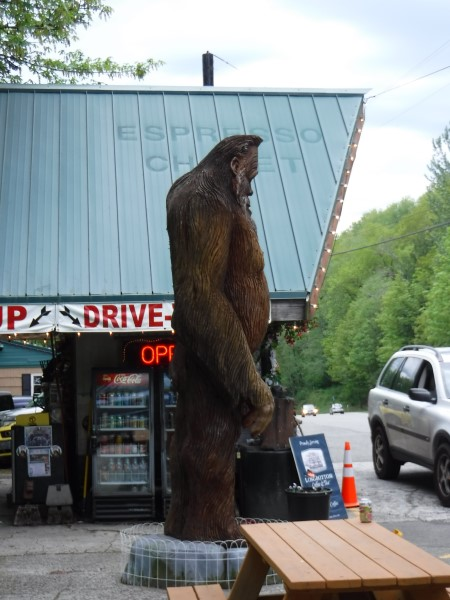 Sasquatch near Index, WA